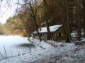 Circuit du Sundgau : la Forêt de Carspach