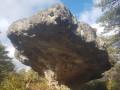 Le champignon préhistorique