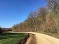 Vignes et bois autour de Champignol-lez-Mondeville
