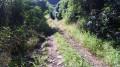 Le Chemin Coméra