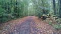 Le Chemin de la Porte Dorée