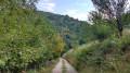 Le chemin de la Veyrière
