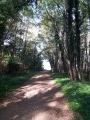 Le chemin de randonnée à Saint-Hilaire Saint-Mesmin