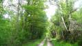 Le chemin de randonnée peu après le domaine de Chilly