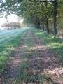 Le chemin de randonnée près de la Rue du Trembleau