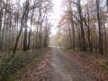 Le chemin de randonnée près du départ