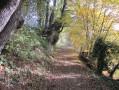 Le chemin en remontant sur Rebigue