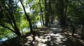 Le chemin est bordé par le Loiret