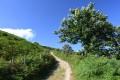 Pics du Mondarrain et d'Ourrezti sur les hauteurs du Pays Basque
