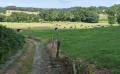 Sur les traces de Chateaubriand
