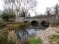 La Sologne autour de la Ferté-Saint-Aubin