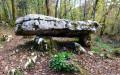 Les dolmens du Bois de l'Ange Gardien