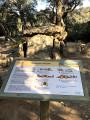 Balade familiale vers le dolmen la Cova de l'Alarb