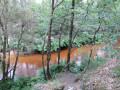 Le long du Canal des étangs de Lège-Cap Ferret