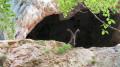 Le Gardien de la Grotte des Gaulois