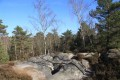 Hike in Fontainebleau forest: a tour of the Apremont Gorges