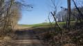 Le GR 65 entre bois et champs