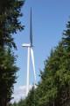 Le GR7 et les éoliennes