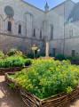 Le jardin de curé ...