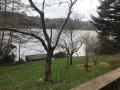 Le lac à travers les jardins des maisons sur la rive Est