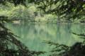 Le lac du Grand Ballon