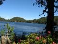 Le Lac Noir mi-juin