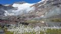 Refuge de l'Arpont - Les lacs et le glacier de l'Arpont (variante)