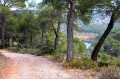 Le lac Zola