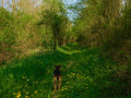 Le long de l'Orvanne