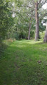 Balade au sein du Parc Régional de Lorraine