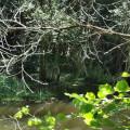 Le Sentier du Jean dôs Bois
