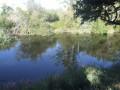 Le long du rio Tormes