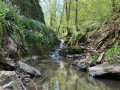Le long du ruisseau de Solières