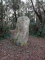 Le Menhir de la Pierre Attelée