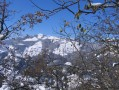 Le Mont Morbié