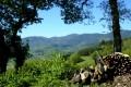 Le Mont Pilat