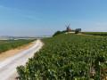 Le moulin de Verzonnay