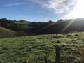 Le paysage vallonné