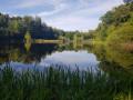 De la Truche aux étangs de Goutte Gland à Méziré