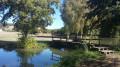 Le petit étang de Panzoult