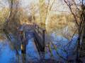 Promenade dans l'ancien lit du Rhin 3 : du Canal de Huningue au Vieux Rhin
