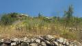 Sentier au pied de Thiéry