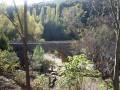 Entre chênaie et eau fraîche à Mialet