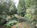 Le rio Arlanzón