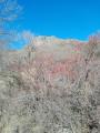 le roc de gourdon en hiver