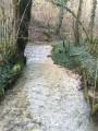 Le ruisseau de Cornebouche
