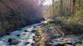 Le Ruisseau de la Font Vieille