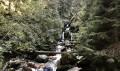 Le ruisseau de la Mariande
