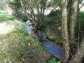 Le ruisseau de la Minette