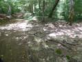 Le ruisseau de Prés Fond